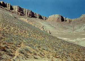 Типы почв по почвенно-географическим зонам.