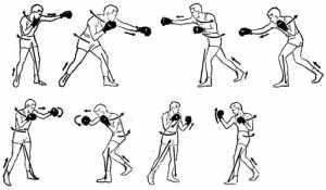 Биомеханические основы движений боксера