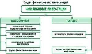Финансовые инвестиции организации.