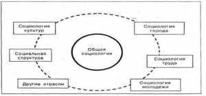 Социология как наука и учебная дисциплина
