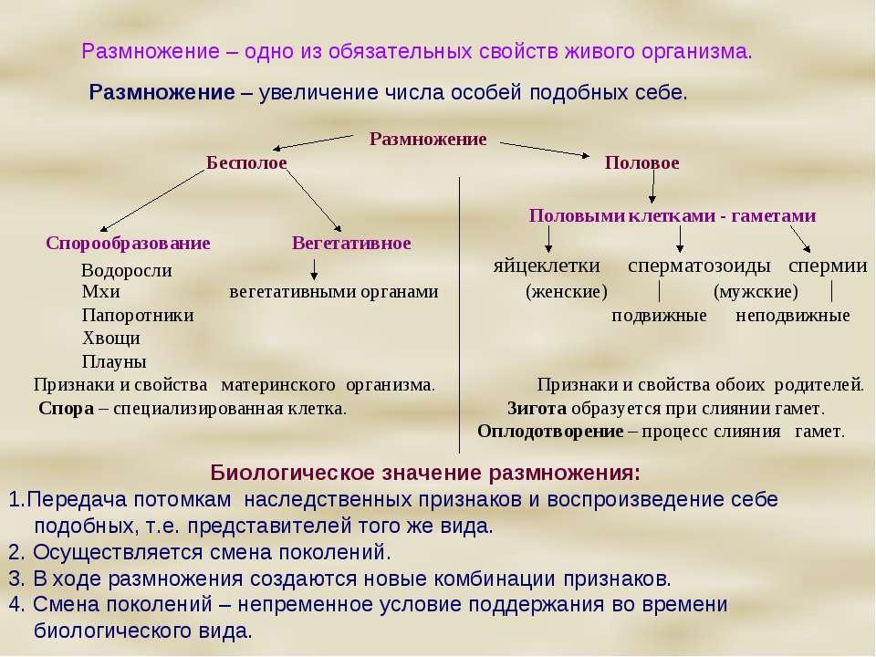 Двойное оплодотворение это слияние одного спермия с яйцеклеткой а другого с центральным ядром зародышевого мешка