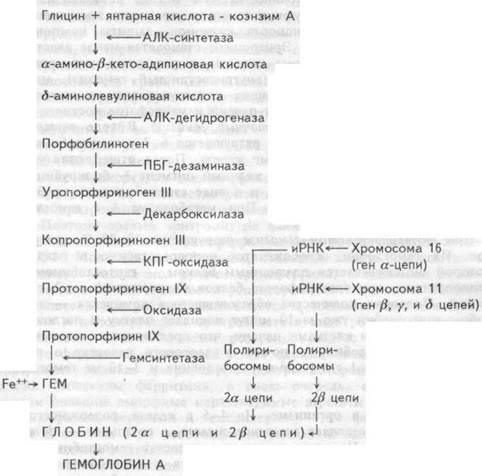 na-otdihe-drug-trahnul-zhenu-v-chulkah