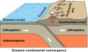 Вода в магматических процессах и на различных стадиях осадочного цикла.