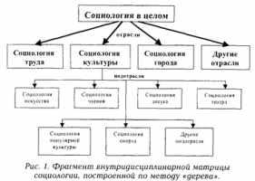 Внутридисциплинарная матрица социологии