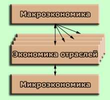 Основы экономических знаний: важнейшие экономические категории и законы
