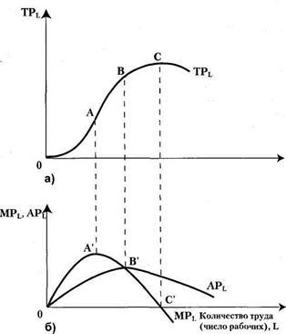 общий средний продукт фактора и их графики